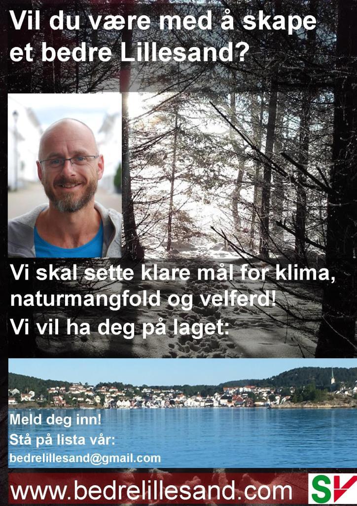 FB-listekampanje6